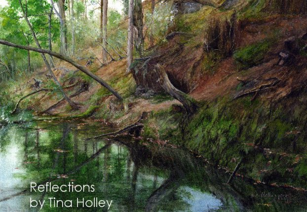 Reflections of trees in the pools between Llyn Mair and Plas Tan y Bwlch, Snowdonia. Painted by Tina Holley.