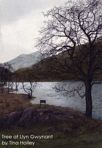 Tina Holleey watercolour of tree silhouette at Llyn Gwynant at the foot of Snowdon.