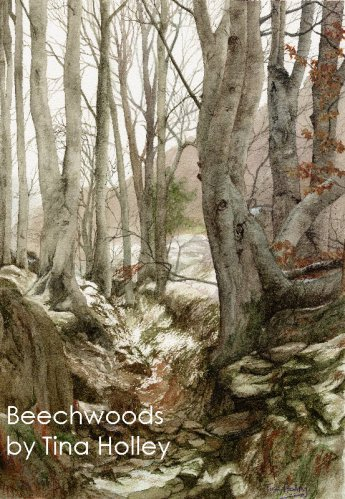 Beechwoods in winter in the Aberglaslyn Pass near Beddgelert in North Wales. Watercolour painting by Tina Holley