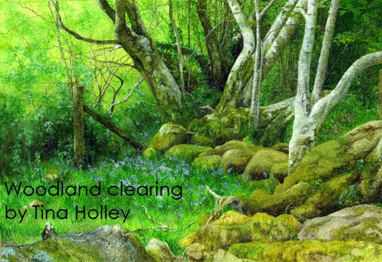 Woodland clearing, bluebells, mossy rocks, Aber Falls, North Wales. Watercolour painting by Tina Holley